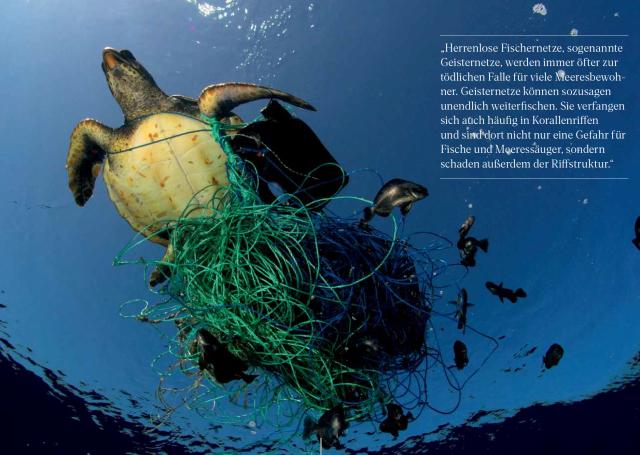 © Marco Care / Greenpeace